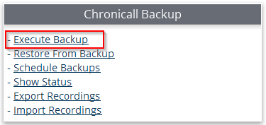 Execute_Backup.png